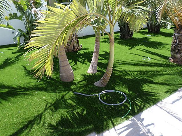 Deluxegrass